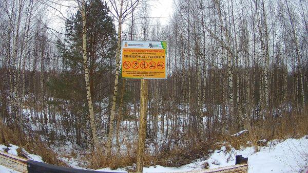 В Ярославской области предотвратили незаконное строительство дороги