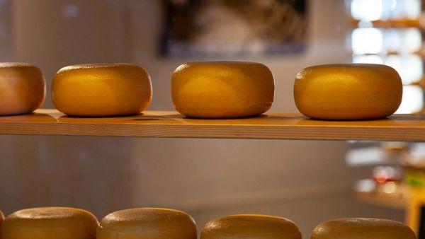 Пыталась украсть 19 упаковок сыра: ярославне дали 8 месяцев колонии-поселения