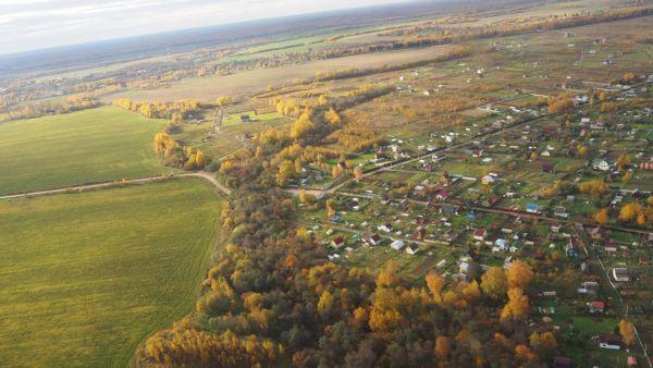 Что входит в комплекс мер по лесовосстановлению в Ярославской области, расскажем в программе на